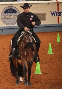 AQHA World Champion: Harley D Zip