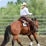 Horse-training tips to get your horse to do correct lope departures with minimal cues. A correct lope departure starts with balance and collection. Photo © The American Quarter Horse Journal